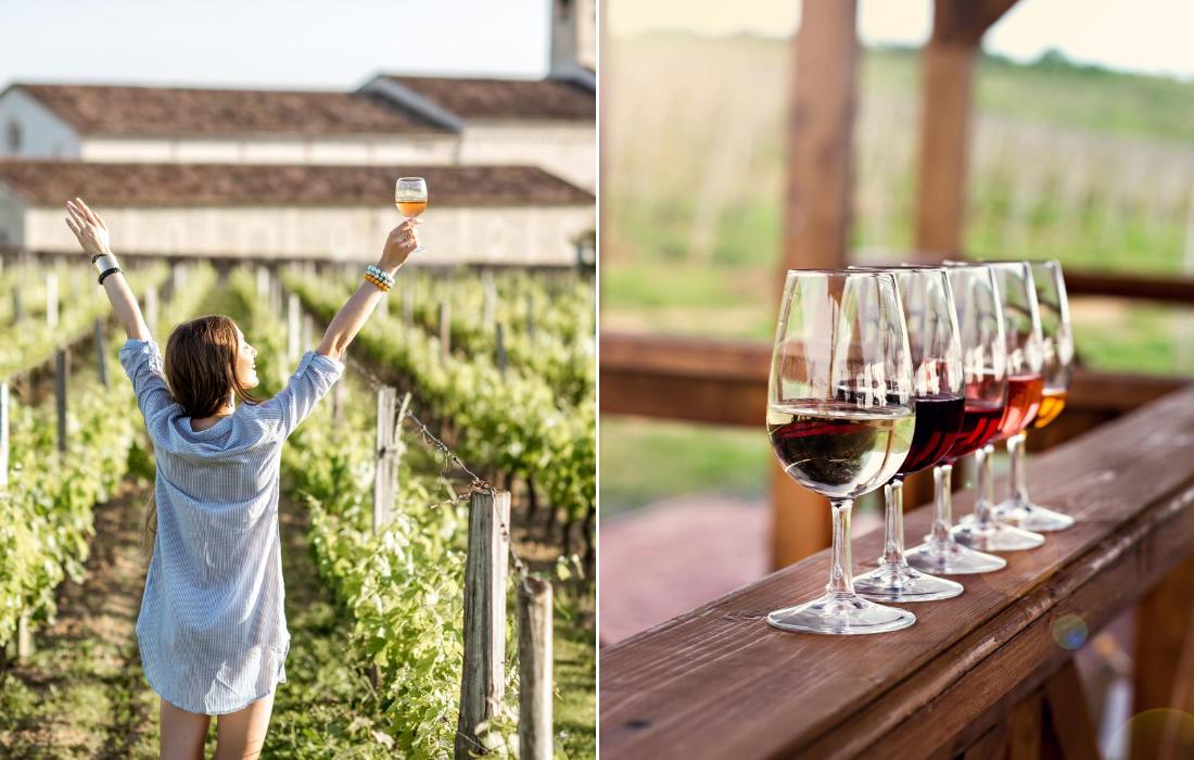 Wine Tasting Tour Barcelona