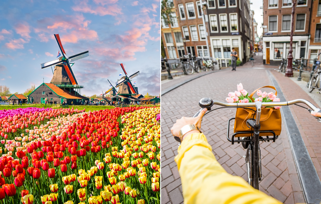 Amsterdam Travel Tours