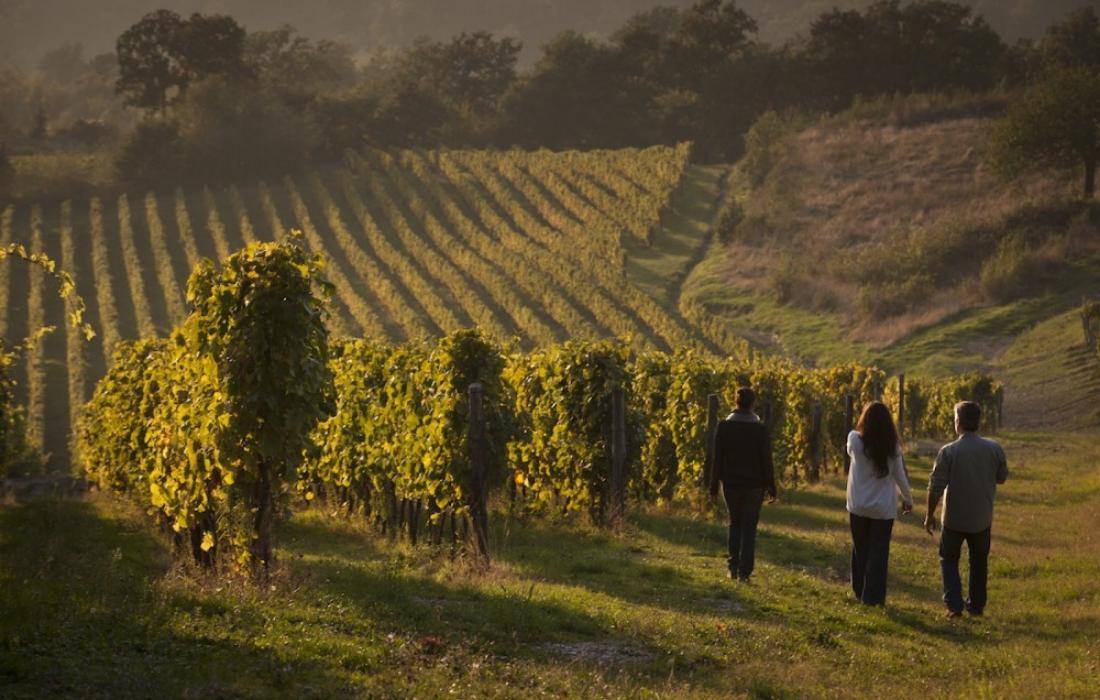Private Food and Wine Tour Emilia Romagna