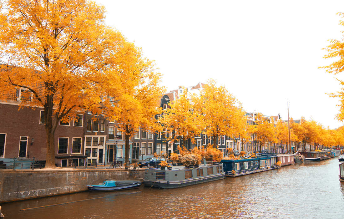 Amsterdam Day Tours